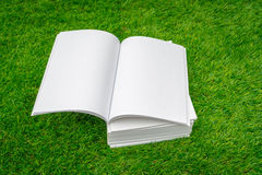 Blank catalog, magazines,book mock up on green grass. Stock Photography