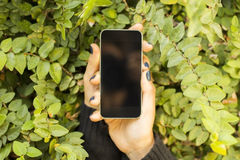 Blank cell phone in the foliage. Close up stock photos