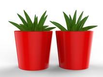 Blank Ceramic Plant Pot Mock up. 3d render illustration. Blank Ceramic Plant Pot Mock up. 3d illustration stock illustration