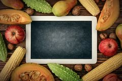 Thanksgiving day concept. Blank chalk board with apples, pears, pumpkin, nuts and bitter melon on wooden background, top view Stock Photos