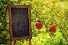 Blank chalkboard in apple orchard Stock Photos