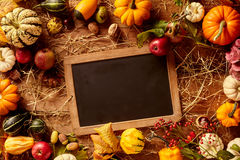 Blank chalkboard bordered by gourds Royalty Free Stock Photo