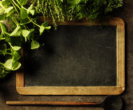 Blank chalkboard with herbs. Stock Photography