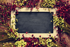 Blank chalkboard surrounded by flowers Royalty Free Stock Photo
