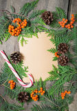 Blank christmas greeting card with fir tree, pinecones and rowan Stock Photos