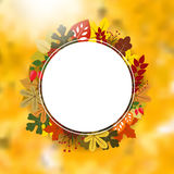 Blank circle frame on autumnal background. With leaves - place for your text. Vector illustration Royalty Free Stock Photography