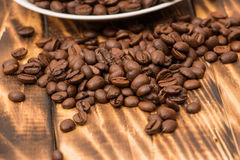 Blank coffee cup with coffee bean Stock Photos