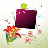 Blank colored photo Royalty Free Stock Photos
