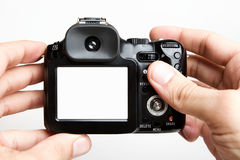Blank compact camera. Taking photo with compact camera royalty free stock image