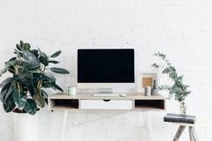 Blank copmuter screen on workplace surrounded with flower pots stock photography