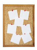 Blank Cork board Royalty Free Stock Photo