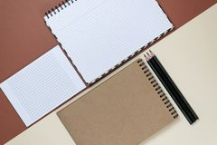 Blank corporate stationery set on brown background. Branding mock up. Flat lay. royalty free stock photography