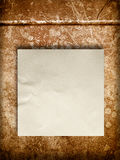 Blank Crumpled paper on old wall Royalty Free Stock Image