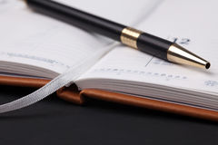 blank dagbokpenna Arkivfoton