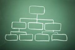 blank diagramorganisation för blackboard Royaltyfria Bilder