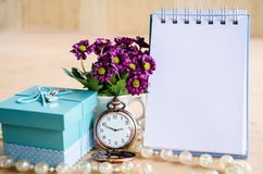 Blank diary and gift box. Stock Images