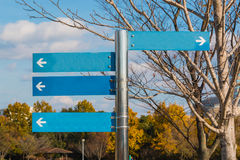 Blank direction blue signpost Royalty Free Stock Image