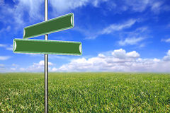Blank Directional Signs in an Open Field Royalty Free Stock Images