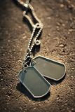 Blank dog tags background Royalty Free Stock Image