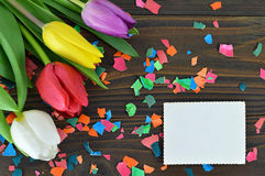 Blank Easter card, Easter flowers and colored eggshell Royalty Free Stock Photo