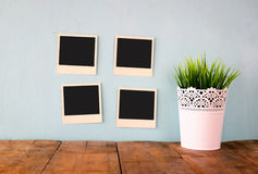 Blank empty instant photos hang over wooden textured background next to flowerpot Stock Photography