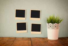 Blank empty instant photos hang over wooden textured background next to flowerpot Royalty Free Stock Photo