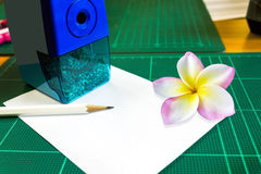 Blank or empty space note pad or memo pad with plumeria or frang Stock Photography