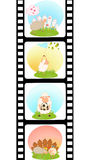 Blank film colorful strip with sheep Stock Photo