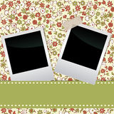Blank film frame Royalty Free Stock Image