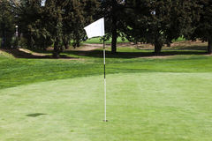 Blank flagstick on a putting green in a golf course. Stock Photography