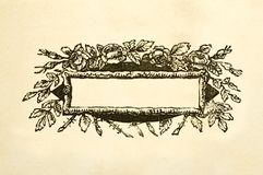 Blank floral victorian title box stock images
