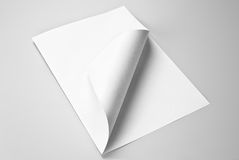 Blank folded sheet of paper with curled corner:. Blank folded sheet of paper with curled corner over gray background royalty free stock photos