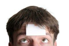 Blank forehead one Stock Photos