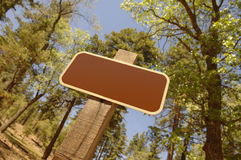Blank Forest Sign Stock Image
