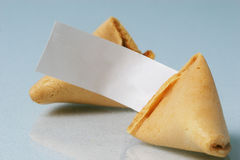 Blank Fortune Cookie Stock Photo