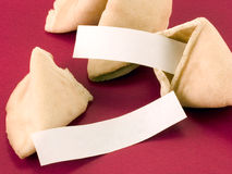 Blank fortune cookie messages Royalty Free Stock Photography