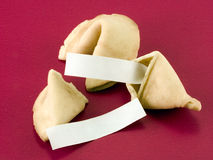 Blank fortune cookie messagess 2. Blank fortune cookies fillers, ready for your copy.  Deep DOF Stock Photo