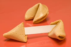 Blank Fortune Cookie Stock Photography