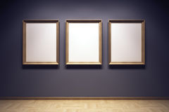 Blank frames in the gallery. 3d rendering Stock Photography