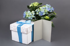 Blank gift card, bouquet of hydrangea flowers and gift box over Royalty Free Stock Photo