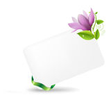 Blank Gift Tag With Magnolia Royalty Free Stock Images