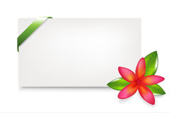 Blank Gift Tag. Vector Stock Images