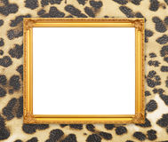 Blank golden frame with leopard texture Stock Photography