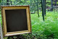 Blank golden frame in nature Royalty Free Stock Image