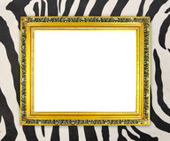 Blank golden frame  with zebra texture Royalty Free Stock Image