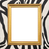 Blank golden frame  with zebra texture Royalty Free Stock Photography