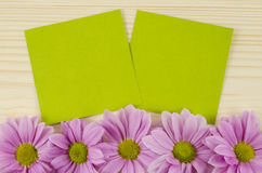 Blank green cards and pink flowers on wooden background Royalty Free Stock Photography