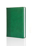 Blank green hardback book with ornament Royalty Free Stock Image