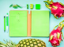 Blank green notebook with tropical fruit and accessories laying on blue table.Home office,workspace design backgrounds Stock Images