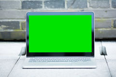 The blank and green screen of laptop. Stock Images